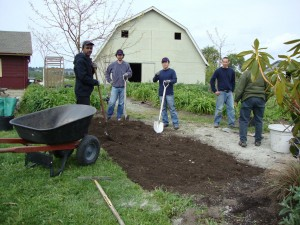 volunteer team planting